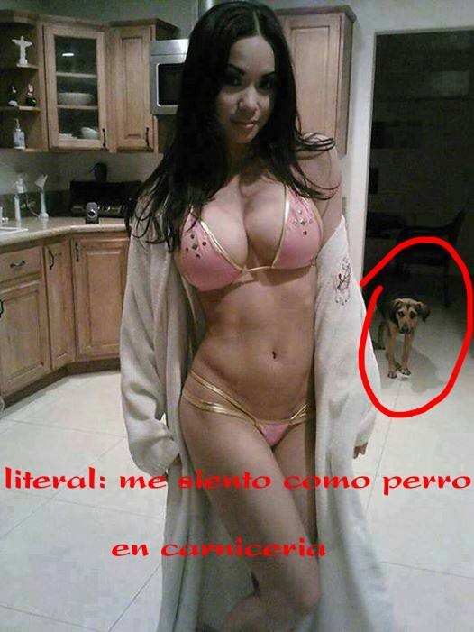 Marcianadas xxx 063015 (26)