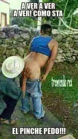 Marcianadas xxx 063015 (30)